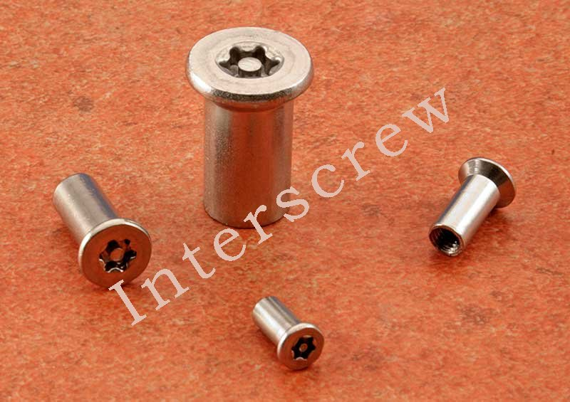 Countersunk Head Interscrew Security TX Pin Stainless Steel A2 - Click Image to Close